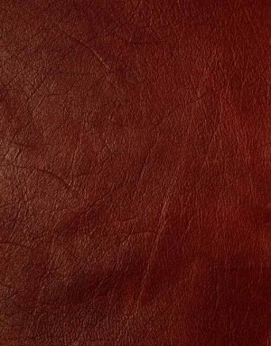 动物毛毯-ID:4003164