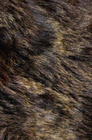 动物毛毯-ID:4004680