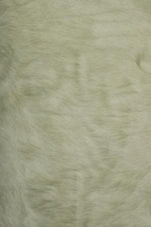 动物毛毯-ID:4004922