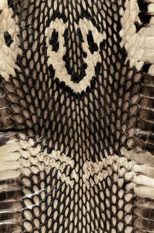 动物毛毯-ID:4007529