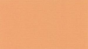 纯色粗布壁纸-ID:4013078