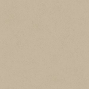 纯色粗布壁纸-ID:4018176