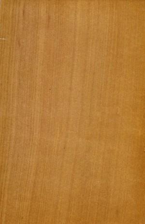 木纹-ID:4022086