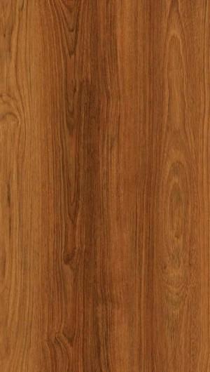 木纹-ID:4022352