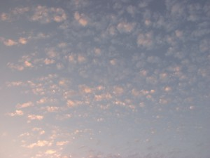 黎明天空-ID:4037957