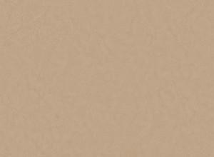 细纹皮革-ID:4037971