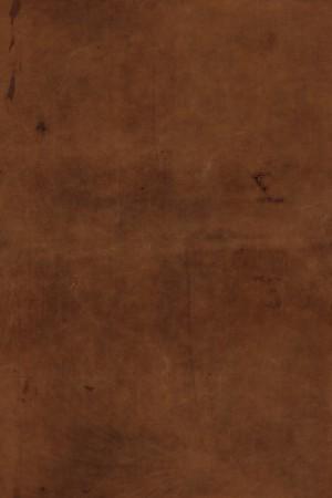 细纹皮革-ID:4037974